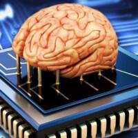 Интерфейс Neuralink «будет заменять целые области мозга»