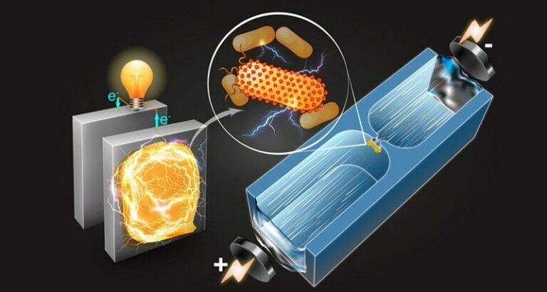 Аккумуляторы на основе вирусов. Что же предлагают ученые из MIT?