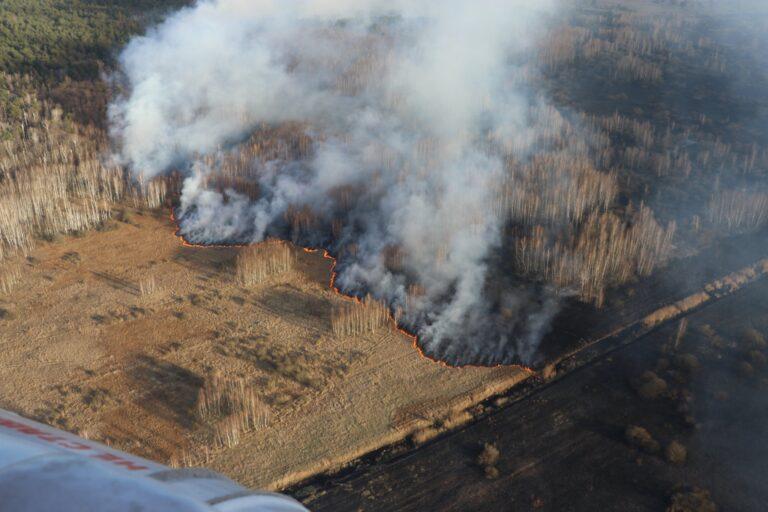 Вблизи Чернобыльской АЭС наблюдаются верховые пожары