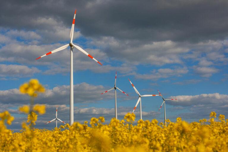 Ветроэнергетика Германии растет, несмотря на COVID-19