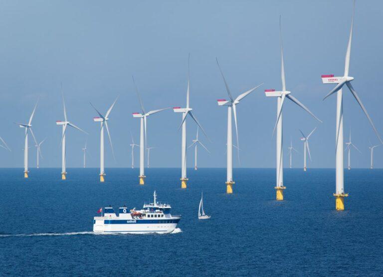 Новые ветровые фермы полностью закроют потребности Дании в электроэнергии