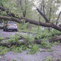В Новосибирской и Свердловской областях бушует стихия