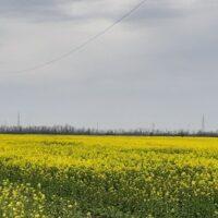 В Адыгее раскрыта серия краж энергооборудования на 700 тыс. рублей