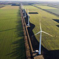 Корма для животных будут производить на «зеленой» энергии