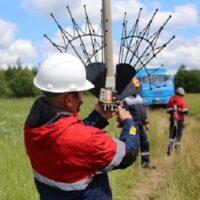 «ФСК ЕЭС» установит 578 птицезащитных устройств на семи ЛЭП в Ярославской области