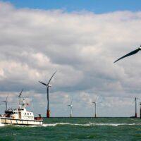 Шотландия запустит тендер на строительство ветровых ферм