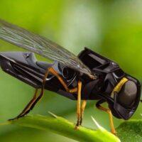 Создан эффективный робот-опылитель, заменяющий пчел