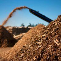 К вопросу использования древесной биомассы в электроэнергетике