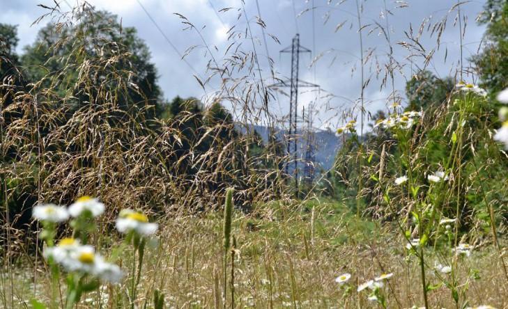 Россети Кубань» повышает надежность энергоснабжения отдаленных поселков в предгорных районах Кубани