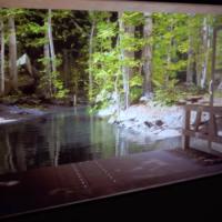 Голографическое окно Roomality создает 3D-миры без очков и гарнитур