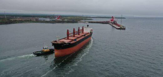 Первое судно в Китай: терминал АО «ВТУ» компании «Колмар» успешно провел испытания оборудования