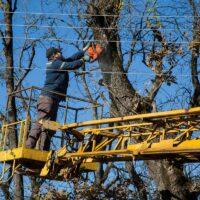 Несанкционированная вырубка деревьев вблизи ЛЭП вызвала технологическое нарушение на высоковольтной линии электропередачи филиала «Россети Урал»-«Сведловэнерго»