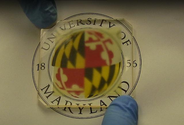 Американские ученые разработали прозрачную древесину для замены стекла и пластика