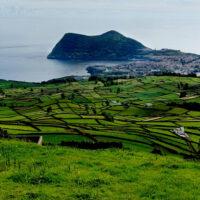 В Португалии владельцам электрокаров разрешили продавать лишнюю энергию