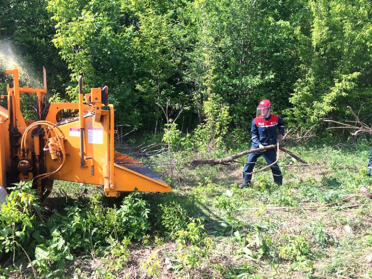 Оренбургские энергетики проводят расчистку охранных зон ЛЭП от деревьев и кустарников
