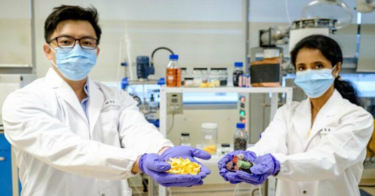 Ученые разработали дешевый способ переработки литий-ионных аккумуляторов с помощью апельсиновой кожуры