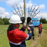 «ФСК ЕЭС» вложит 14,6 млн. рублей в установку птицезащитных устройств на 16 ключевых энерготранзитах в Забайкальском крае и Республике Бурятии