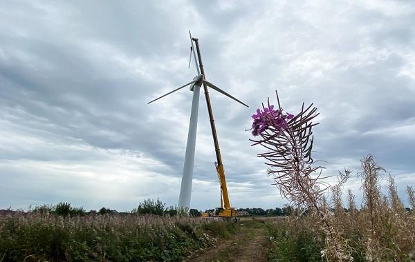 Старейший ветропарк России станет туристическим объектом