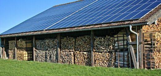 Европейская ассоциация по солнечной энергетике предлагает сделать агрофотовольтаику частью сельскохозяйственной политики ЕС