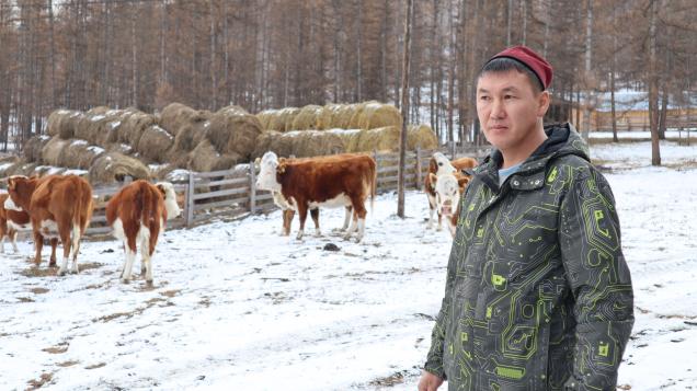 «Россети Сибирь» обеспечивает мощностями новые фермы