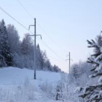 «Россети Центр и Приволжье Кировэнерго» в 2020 году расчистили более 3 тысяч гектаров трасс под ЛЭП