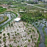 В Тайване на месте бывшего аэропорта откроется высокотехнологичный парк, который будет очищать воздух с помощью солнечной энергии