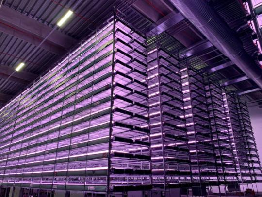В Дании открылась вертикальная ферма, работающая на энергии ветра