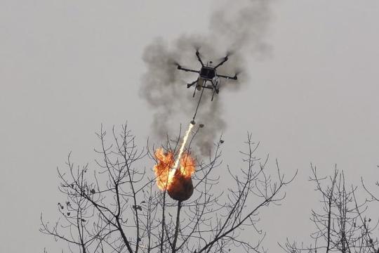 В Китае дронов обучили уничтожать осиные гнезда