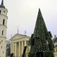 В Литве главная елка светится благодаря утилизации использованной кофейной гущи