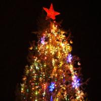 В райцентре в Иркутской области загорелась новогодняя ёлка