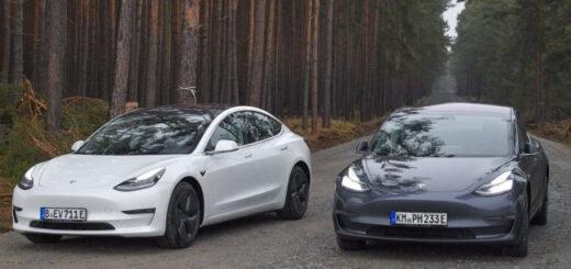 Стройка немецкой гигафабрики Tesla на время приостановлена
