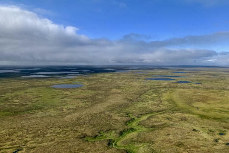 «Газпром нефть» и «Shell» создали совместное предприятие для освоения масштабного кластера углеводородов на Гыданском полуострове