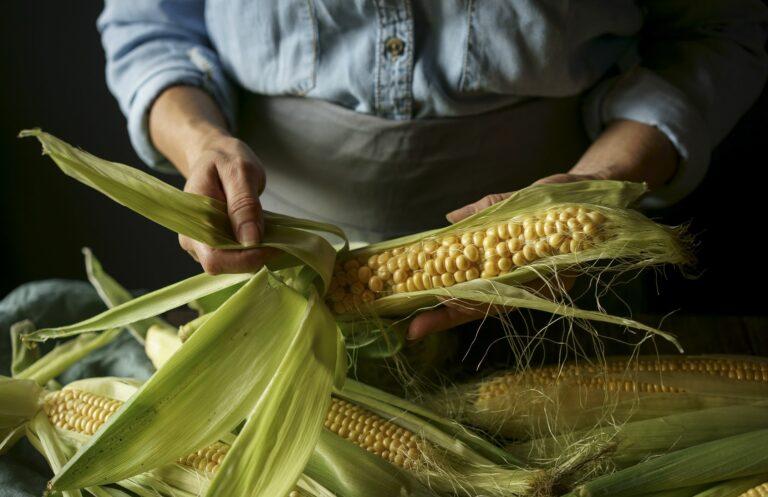 Ученые превратили табачную и кукурузную шелуху в ценный промышленный материал