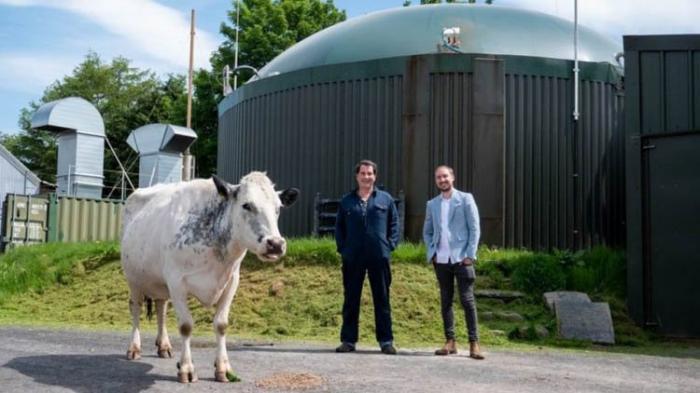В Великобритании фермер майнил криптовалюту с помощью энергии от отходов сельского хозяйства