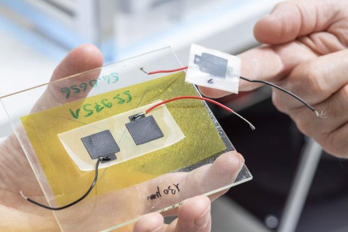 Швейцарские учёные создали из опилок и сажи биоразлагаемый аккумулятор