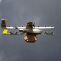 Австралийские дроны-доставщики атакованы птицами